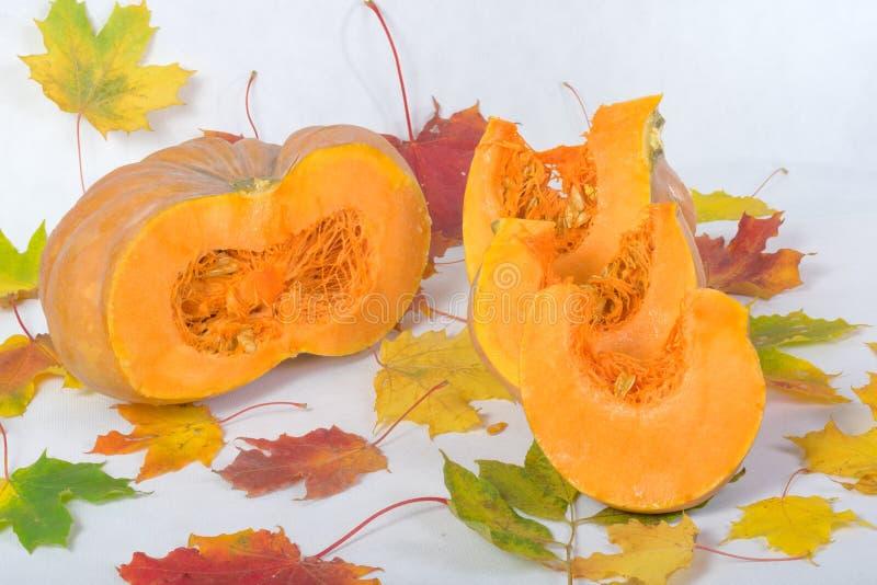 Primer anaranjado de la calabaza imagen de archivo
