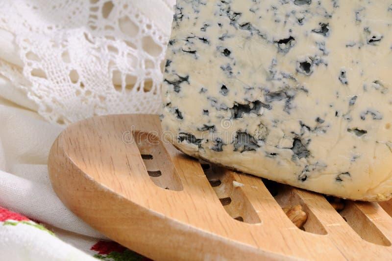 Primer con el estudio mohoso del queso aislado imagen de archivo libre de regalías