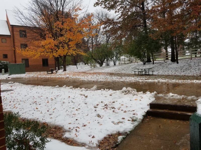 Primer día de la nieve en campus fotos de archivo