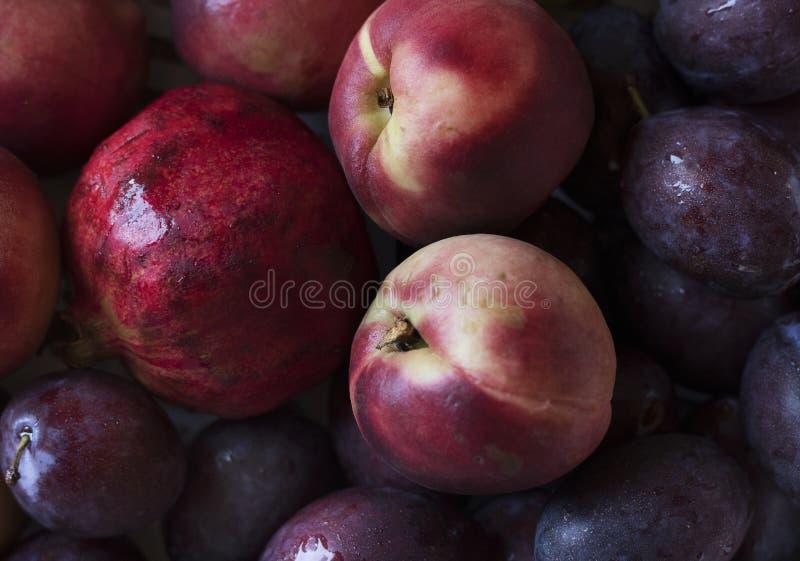 Primer de ciruelos y de otras frutas fotos de archivo
