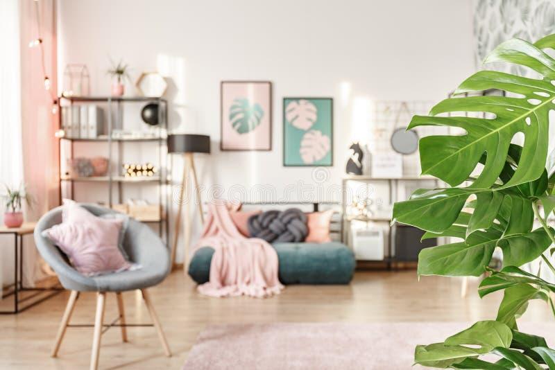 Primer de hojas verdes fotos de archivo libres de regalías