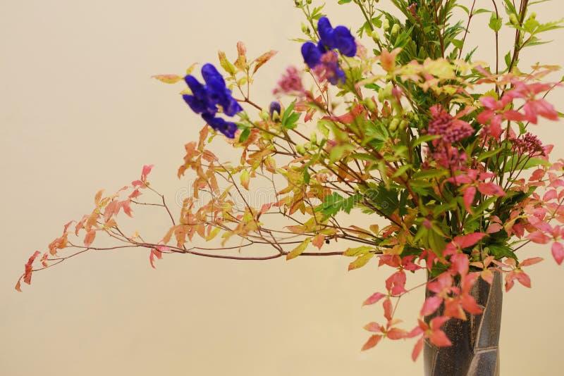 Primer de Ikebana fotografía de archivo