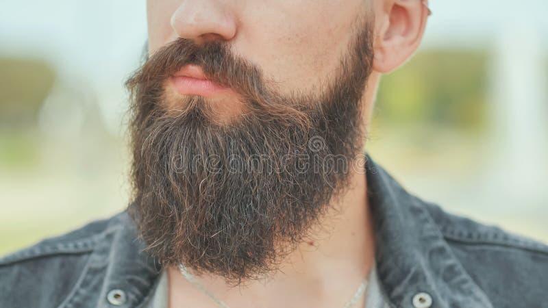 Primer de la barba de un hombre brutal foto de archivo libre de regalías