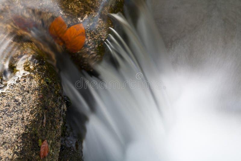 Download Primer de la cascada foto de archivo. Imagen de ambiente - 22009950