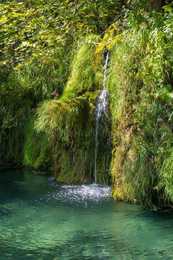 Primer de la cascada en el parque nacional Croacia de los lagos del plitvice de la turquesa imagen de archivo libre de regalías