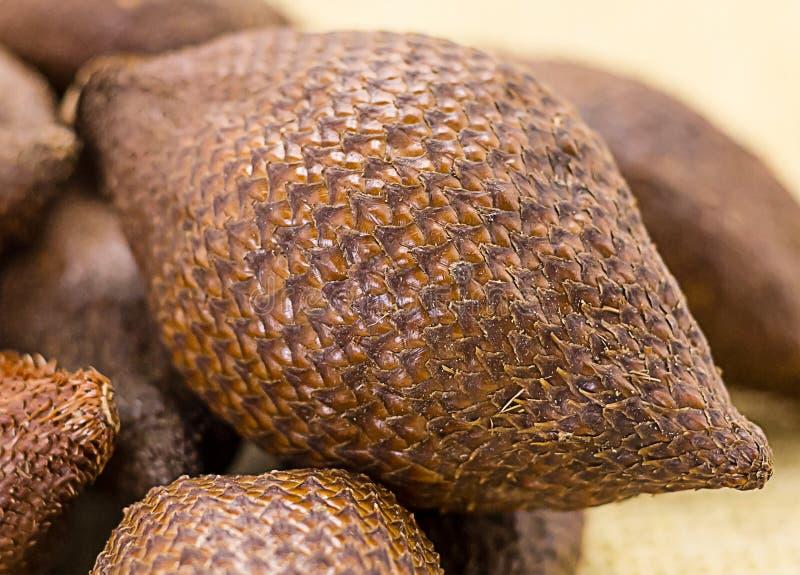 Primer de la fruta de la serpiente de Salak, modelo marrón fino de la serpiente de la cáscara, fruta jugosa imagenes de archivo