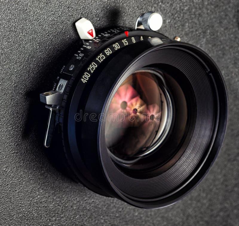Primer de la lente de cámara profesional de visión imagen de archivo