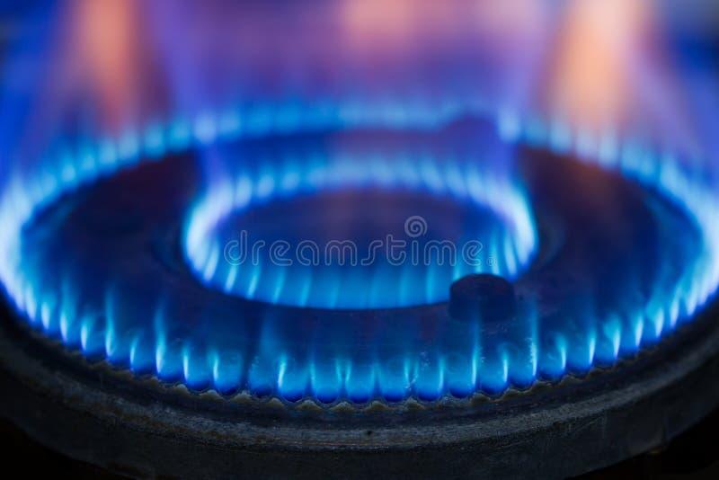 primer de la llama del mechero de gas imagen de archivo