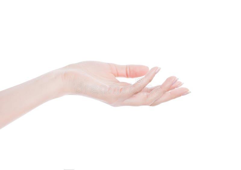 Primer de la mano hermosa del ` s de la mujer palma para arriba imágenes de archivo libres de regalías