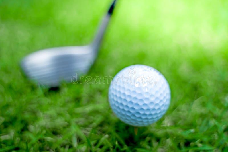 Primer de la pelota de golf en foco suave en la luz del sol con la hierba verde paisaje amplio como fondo, patio del deporte para fotografía de archivo