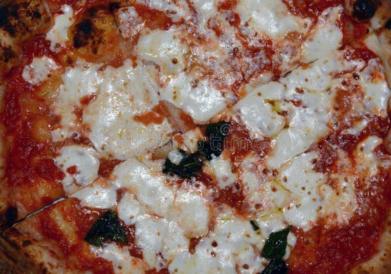 Primer de la pizza fina del margarita del estilo de Nueva York de la corteza imágenes de archivo libres de regalías