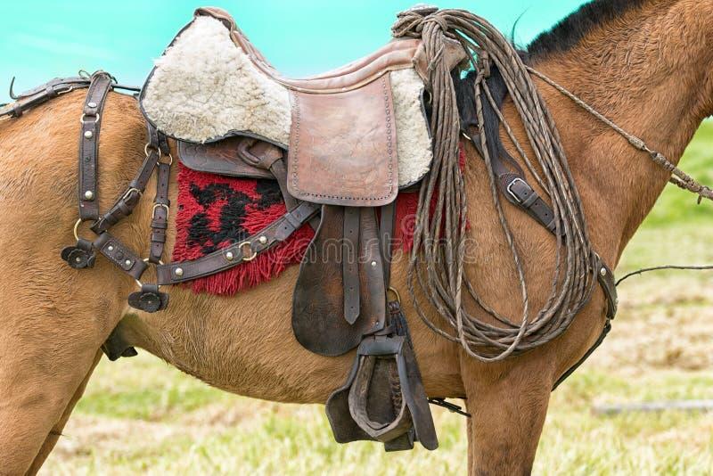 Primer de la silla de montar del caballo en ecuador foto editorial imagen de ecuador rodeo - Silla montar caballo ...