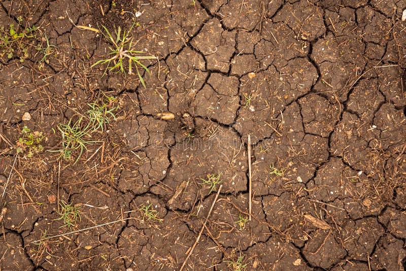 Primer de la textura del suelo seco fotografía de archivo