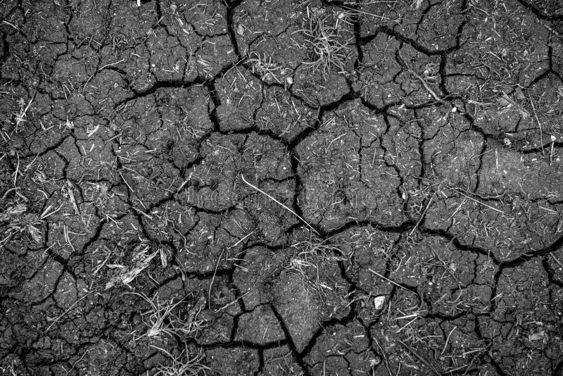 Primer de la textura del suelo seco fotos de archivo libres de regalías
