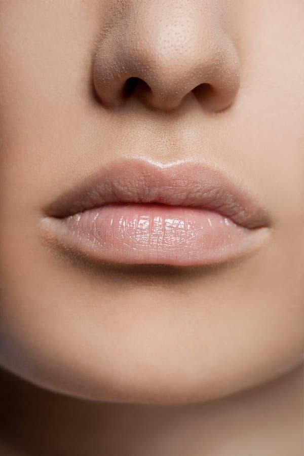 Primer de labios mujeriles imagen de archivo libre de regalías