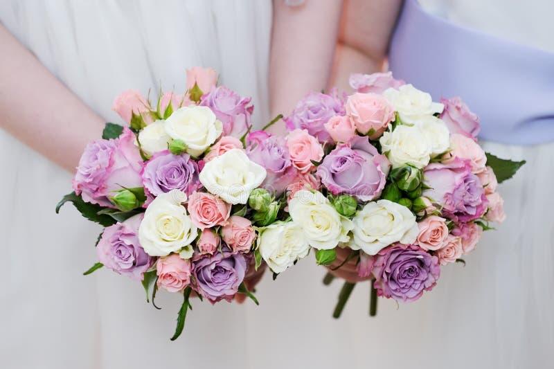 Primer de las flores de las damas de honor fotos de archivo