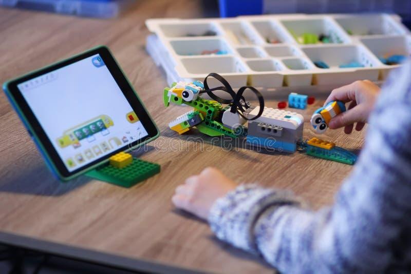 Primer de las manos del muchacho que construyen el robot y que lo programan en la lección de la robótica en la escuela imagen de archivo libre de regalías