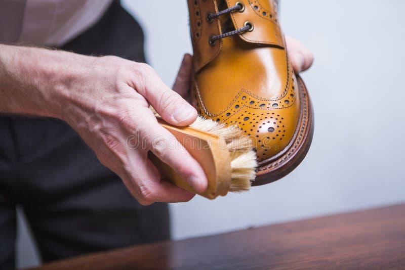 Primer de las manos masculinas con el cepillo de pulido para Tan Brogue Derby Boots fotografía de archivo