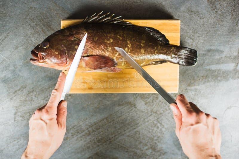 Primer de las manos masculinas que cortan pescados grandes del mero en un tablero de madera con dos cuchillos fotos de archivo