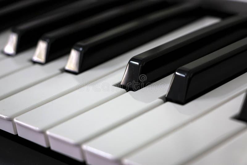 Primer de los claves del piano imagen de archivo