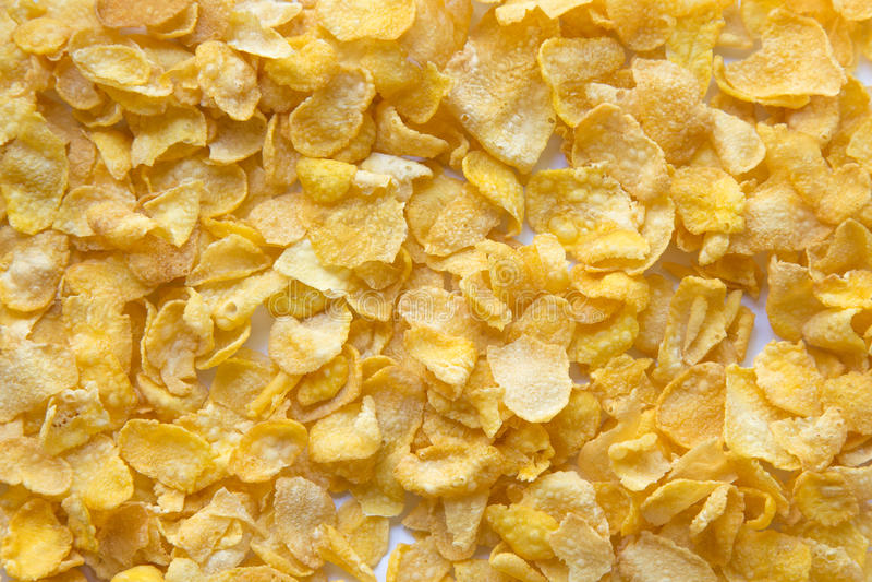 Primer de los copos de maíz Cereales, desayuno foto de archivo