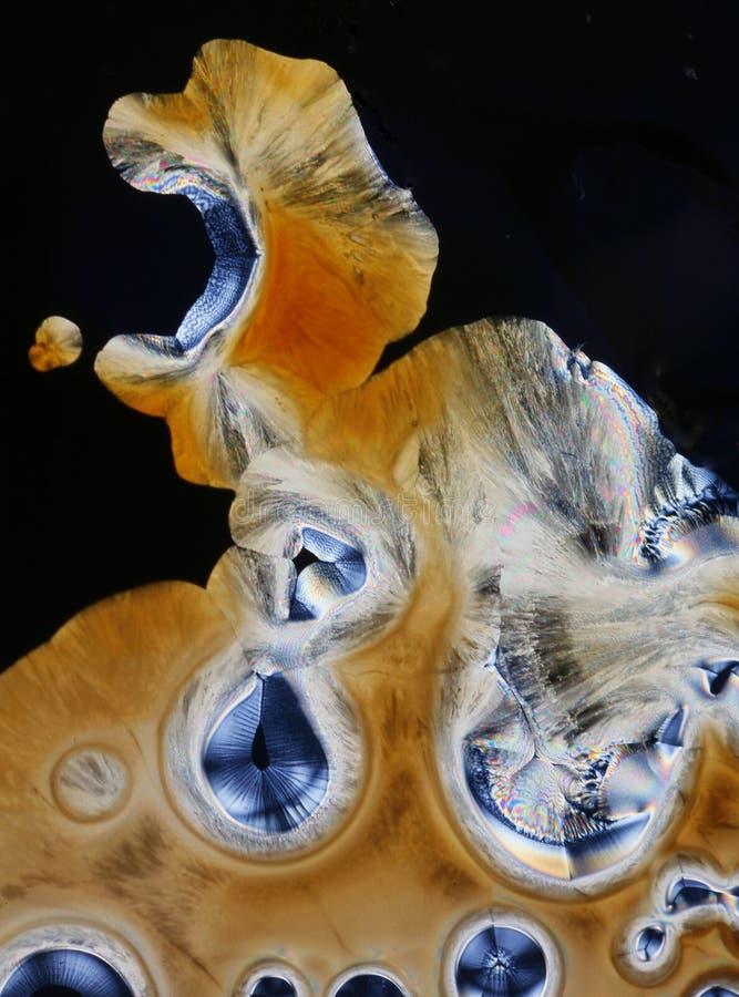 Primer de los cristales del ácido ascórbico fotos de archivo libres de regalías