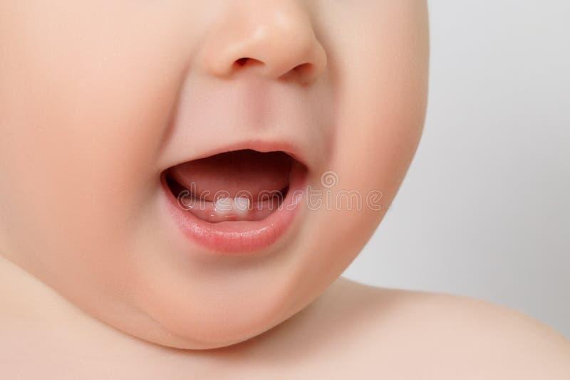 Primer de los dientes de un bebé imagen de archivo