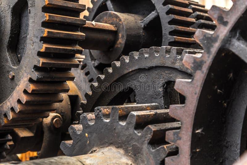 Primer de los dientes, engranajes, maquinaria imagenes de archivo