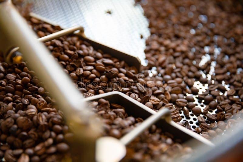 Primer de los granos de café crudos en máquina del asador imagen de archivo libre de regalías