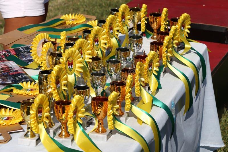Primer de los rosetones y de los trophys coloridos de los premios de las cintas para los ganadores en la competencia de la equita fotos de archivo libres de regalías