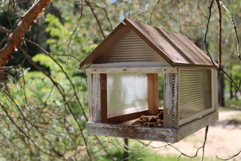 Primer de madera en el parque, alimentador de la pajarera del pájaro imagenes de archivo