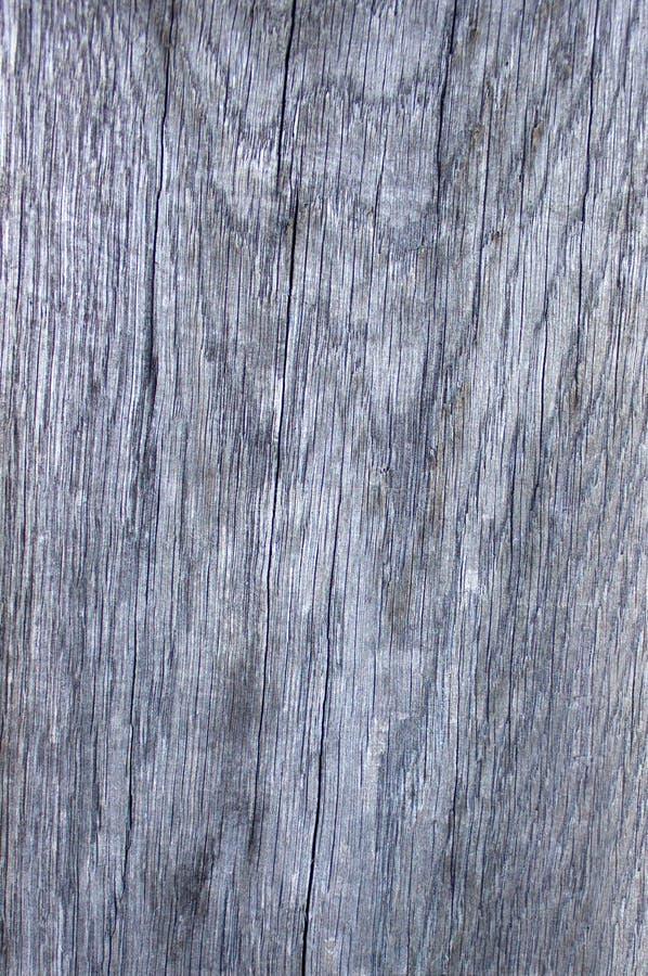 Primer de madera gris de la textura de la foto imagen de archivo
