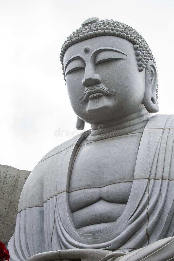 Primer de sentarse y estatua pacífica de Buda del gigante dentro de la colina del Buda foto de archivo libre de regalías