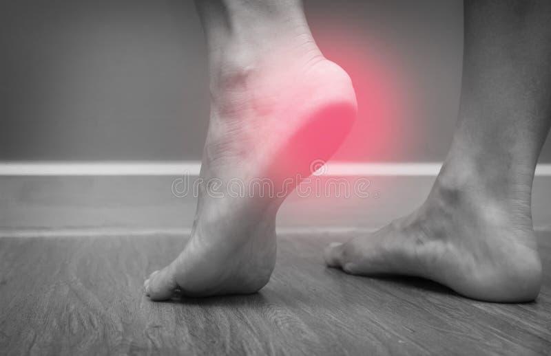 Primer de un dolor femenino del talón del pie con el punto rojo, fasciitis plantar fotografía de archivo