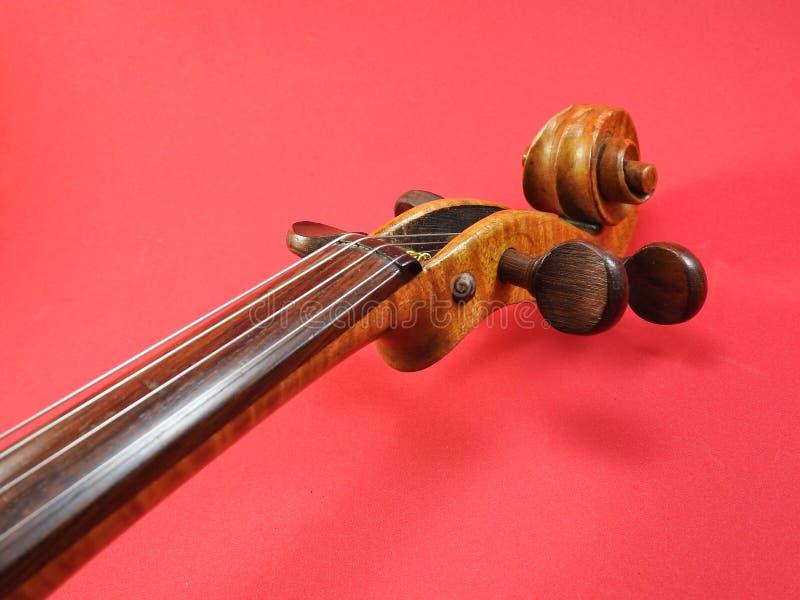 Primer de un violín: voluta, clavija-caja y clavijas de adaptación foto de archivo