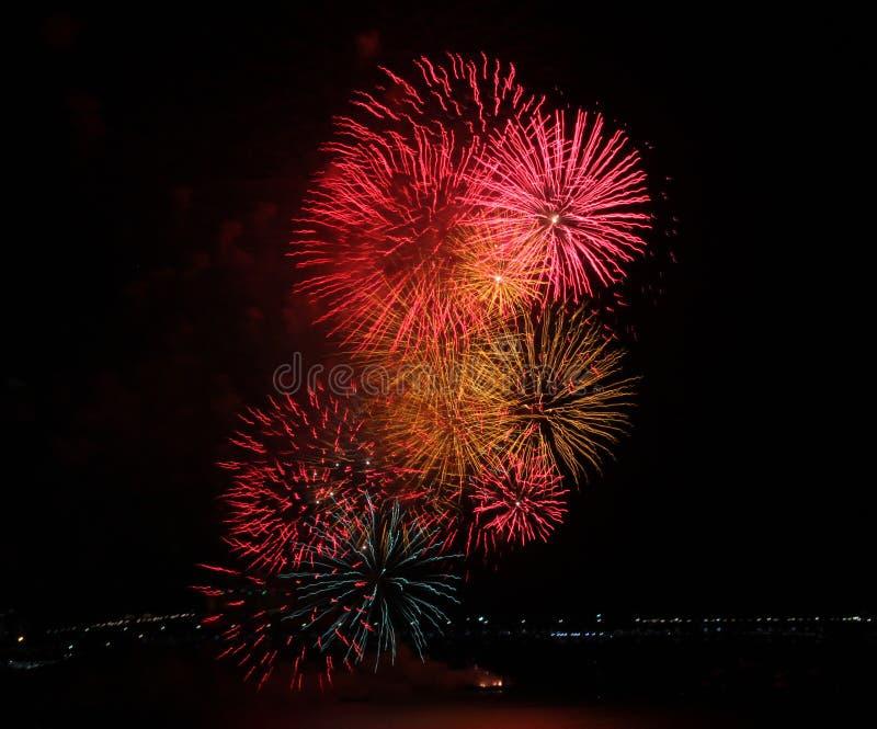 Primer de una exhibición multicolora de los fuegos artificiales foto de archivo