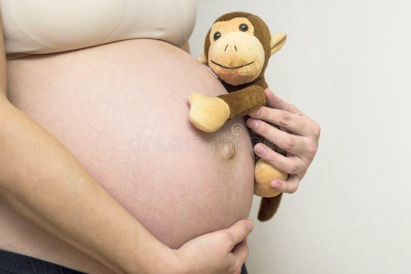Primer de una mujer joven, embarazada que se sostiene el vientre con un juguete del mono Juguete del mono de la tenencia de la mu fotografía de archivo