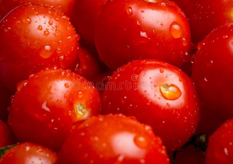 Primer de una pila de tomates de cereza mojados foto de archivo libre de regalías
