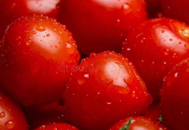 Primer de una pila de tomates de cereza mojados foto de archivo