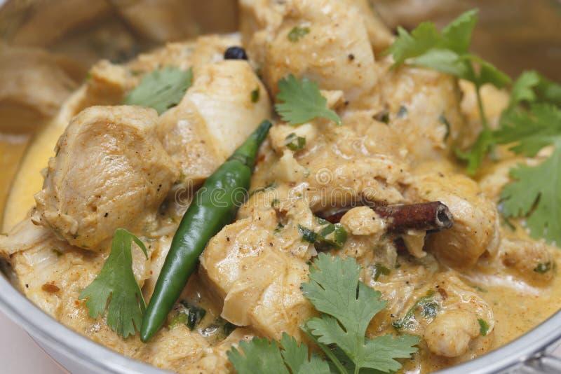 Primer del curry del pollo de Pasanda imagen de archivo