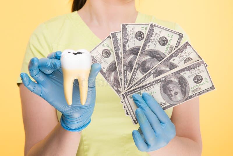 Primer del diente blanco de la tenencia de la mano de una persona fotos de archivo