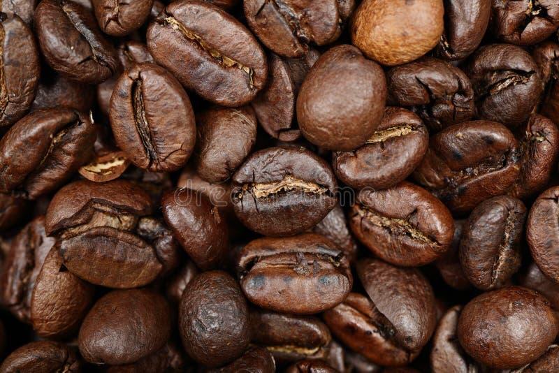Primer del fondo de la textura de los granos de café imagenes de archivo