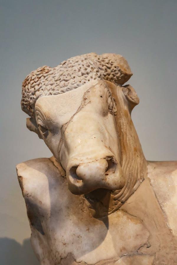Primer del jefe de mármol de la cabeza del toro de Minotaur en cuerpo humano de la mitología griega con la grieta a través de la  fotografía de archivo