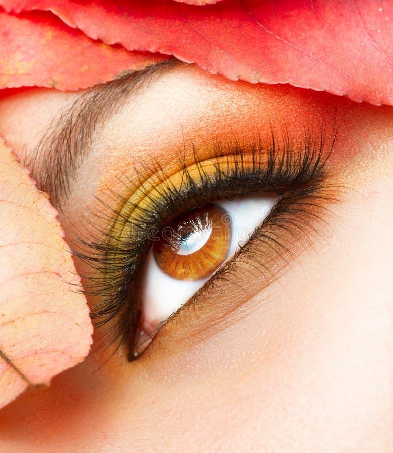 Primer del maquillaje del otoño fotografía de archivo libre de regalías