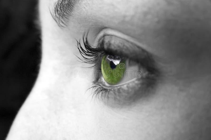 Primer del ojo verde imagen de archivo