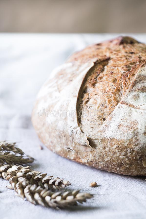 Primer del pan de pan amargo del trigo integral fotografía de archivo libre de regalías