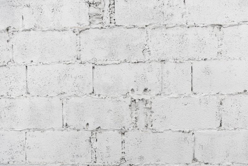 Primer del papel pintado del fondo del extracto de la pared de ladrillo del decaimiento o de la bandera blanco de la web con el e imagen de archivo