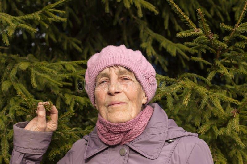 Primer del retrato de un pensionista envejecido 77 delante del árbol Una mujer mayor en una boina y una bufanda fotos de archivo