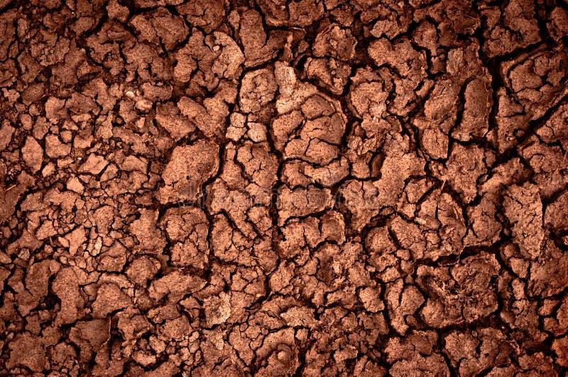 Primer del suelo seco imagen de archivo libre de regalías