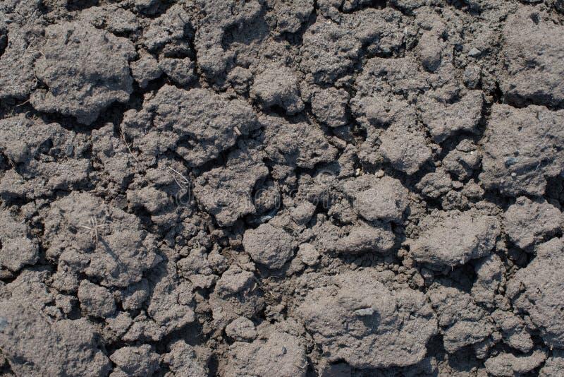 Primer del suelo seco fotografía de archivo